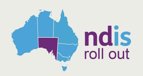 Calling for the NDIS to be more accountable to Aboriginal and Torres Strait Islander people