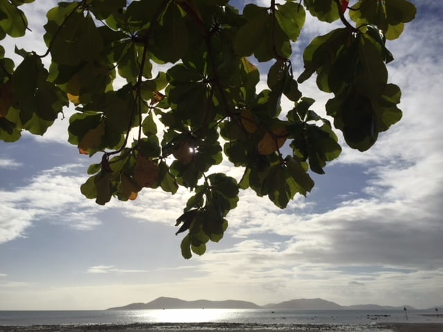 Join us on a CroakeyGO on Palm Island - previewing IHMayDay18