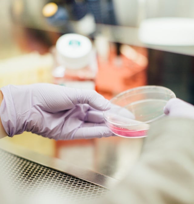 Pathology testing should be a level playing field – for patients and providers