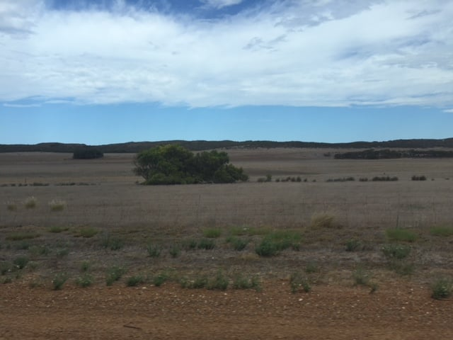 Time for some new horizons, for national rural health policy?