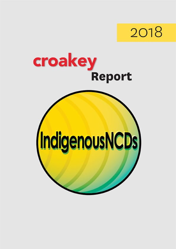 Download our series on the implications for Indigenous peoples of the UN NCDs declaration