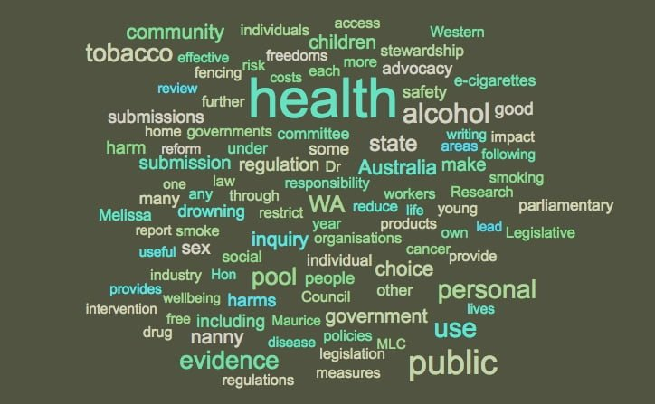 Ten ideas on careful stewardship for the public's health: suggestions for making submissions