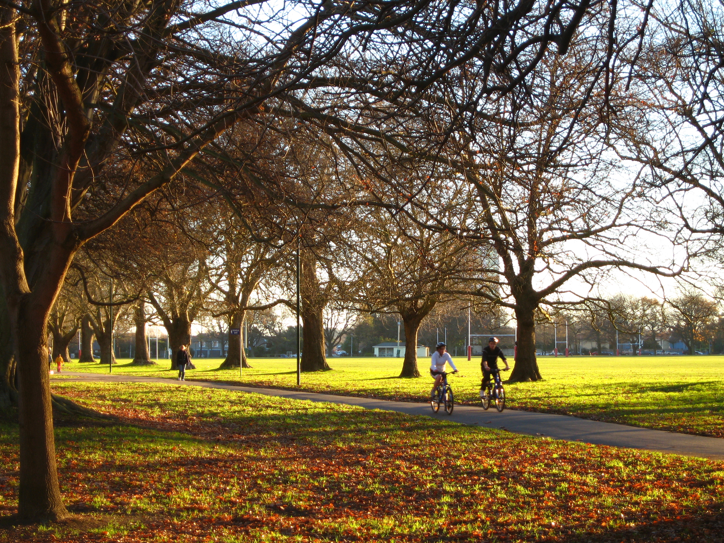 Christchurch's Hagley Park in better times