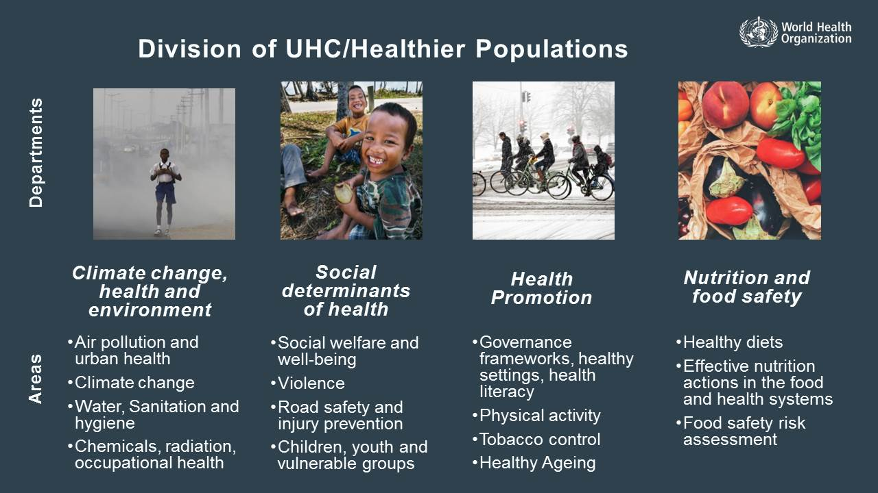 Priorities for the WHO's new division of healthier populations