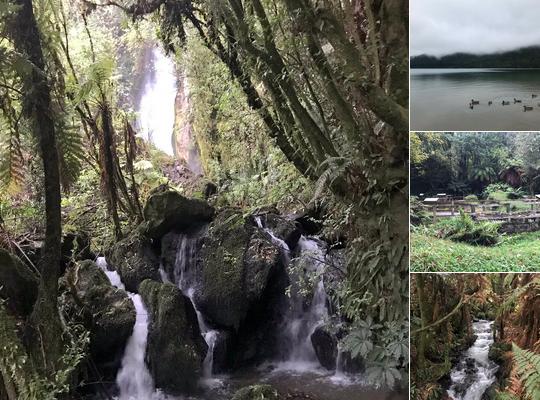 Photos from around Rotorua by Dr Melissa Stoneham