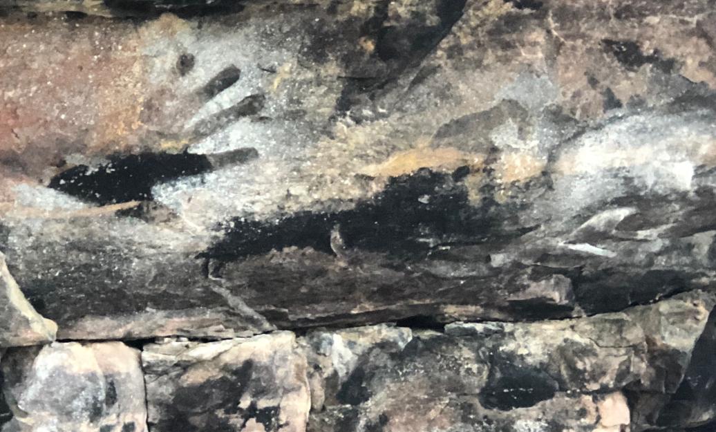 Rock art, Kakadu National Park: Photo: Marie McInerney