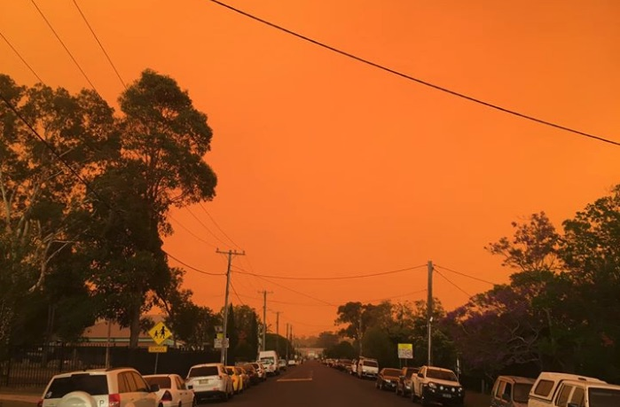 Photograph by Peter Ward, Port Macquarie region of NSW, November 2019