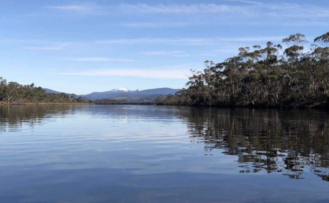 Tweeting upstream. Photo by Mitchell Ward