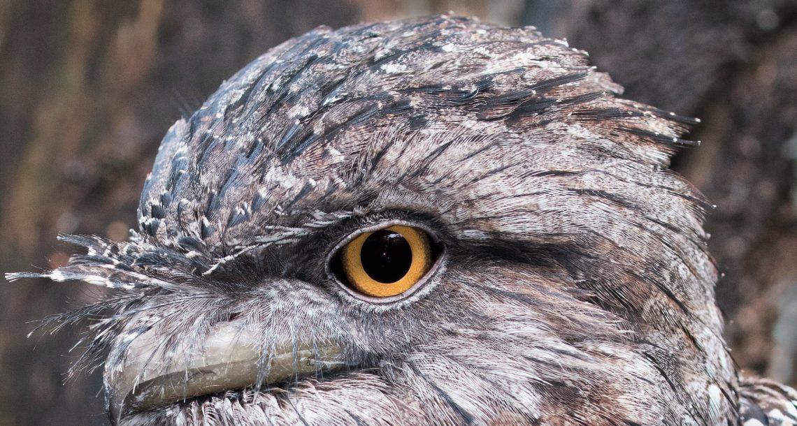 Detail of a photo by David Clode, via Unsplash