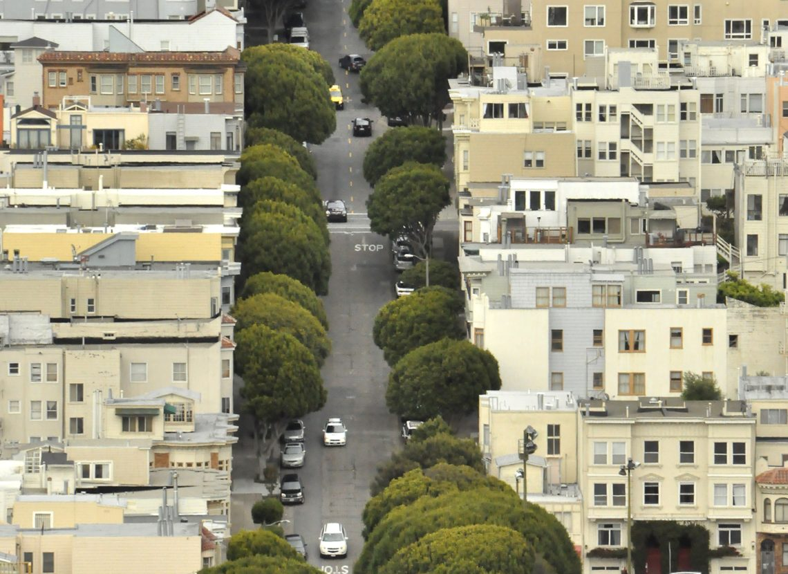 Greening the streets of San Francisco. Photo by Mitchell Ward